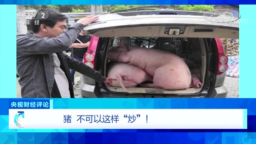 """《央视财经评论》 20191222 猪 不可以这样""""炒""""!"""