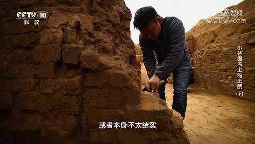 《探索·发现》 20200107 《2020考古探奇》 第一季 小谷围岛上的王陵(下)