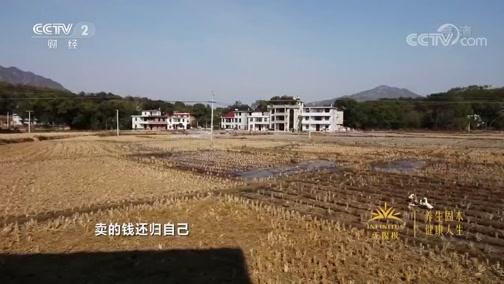 《消费主张》 20200110 家乡的年味:江西兴国