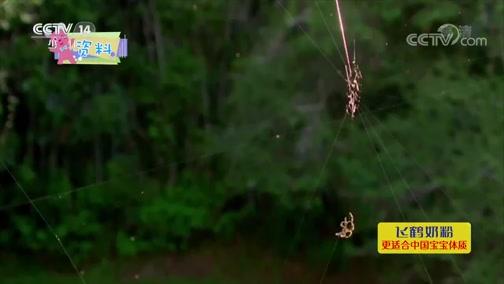 [智慧树]道哥和摩尔:蜘蛛