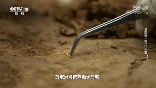 [探索·发现]用金丝串起的玉温明