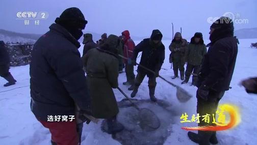 [生财有道]冬捕队开始行动 渔业工人分工明确打鱼忙