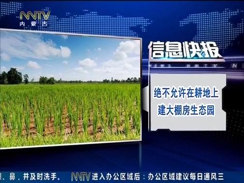 [内蒙古新闻联播]决不允许在耕地上建大棚房生态园