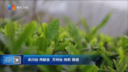 [重庆新闻联播]永川万州入选第三批中国特色农产品优势区