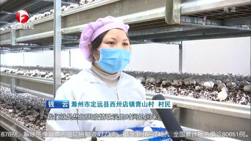 [安徽新闻联播]各地:兴产业促就业 不误农时决战脱贫攻坚
