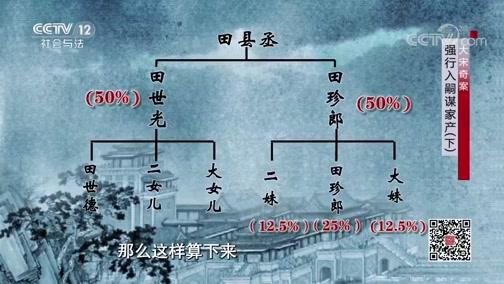 《法律讲堂(文史版)》 20200407 大宋奇案·强行入嗣谋家产(下)