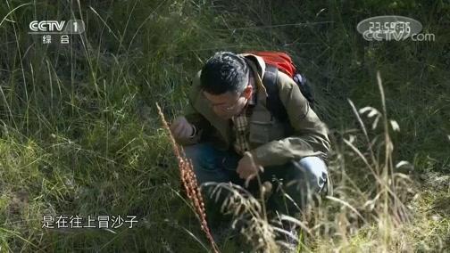 《中华民族》 20200630 遥远的地方 第二集 大庄村