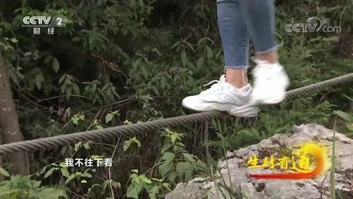[生财有道]一个索道一根绳 高空独索玩的就是刺激心跳!