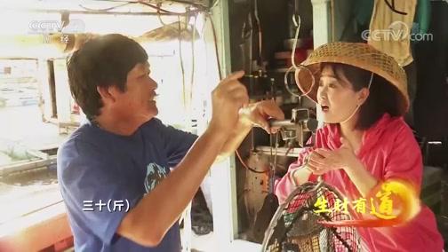 [生财有道]在桂山岛 深水网箱已经成为一道独特的风景线