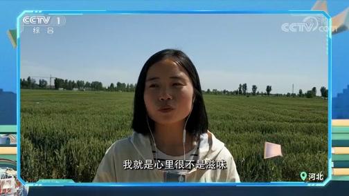 [开讲啦]青年提问杨其长:如何吸引最优秀的年轻人选择农学?