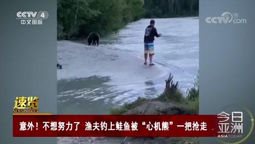 """[今日亚洲]速览 意外!不想努力了 渔夫钓上鲑鱼被""""心机熊""""一把抢走"""