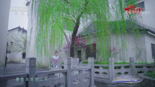 [中国音乐电视]歌曲《相约江南》 演唱:斯兰