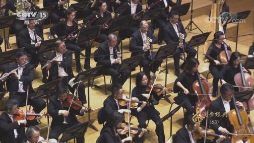 [CCTV音乐厅]《堂吉诃德》变奏八 大提琴:王健 中提琴:张安祥 指挥:余隆 协奏:中国爱乐乐团
