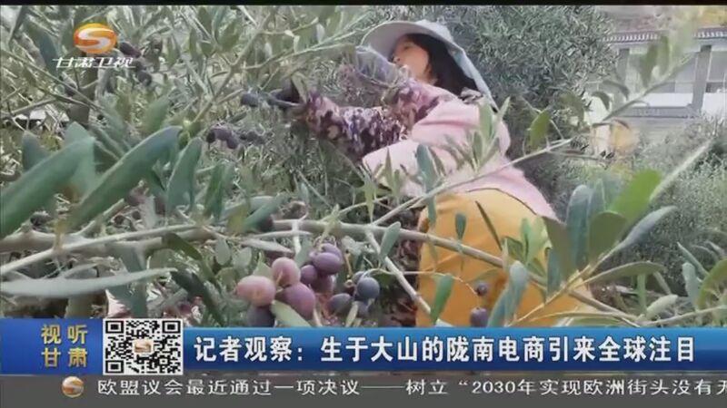 [必威体育下载ios新闻]记者观察:生于大山的陇南电商引来全球注目