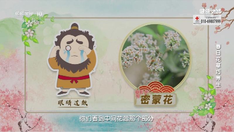 《健康之路》 20210420 春日花草巧养生