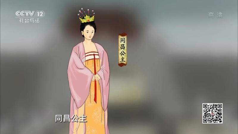 《法律讲堂(文史版)》 20210505 同昌公主之死(上)