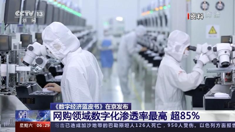 [朝闻天下]《数字经济蓝皮书》在京发布 网购领域数字化渗透率最高 超85%央视网2021年05月15日06:35