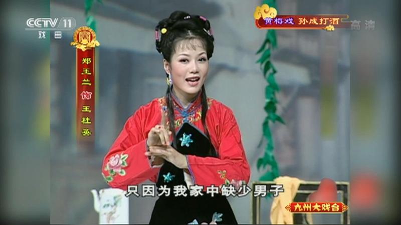 黄梅戏孙成打酒 主演:左胜利 董家林 郑玉兰 九州大戏台 20210516