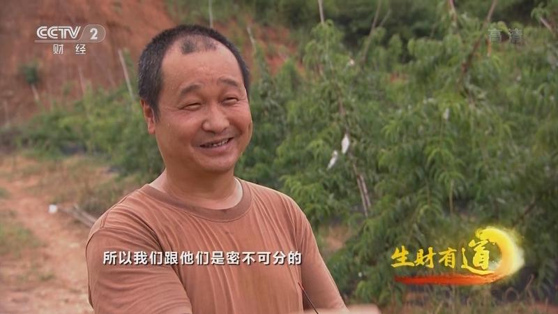 《生财有道》 20210628 夏日经济系列——湖南浏阳:旅游生意乐农家