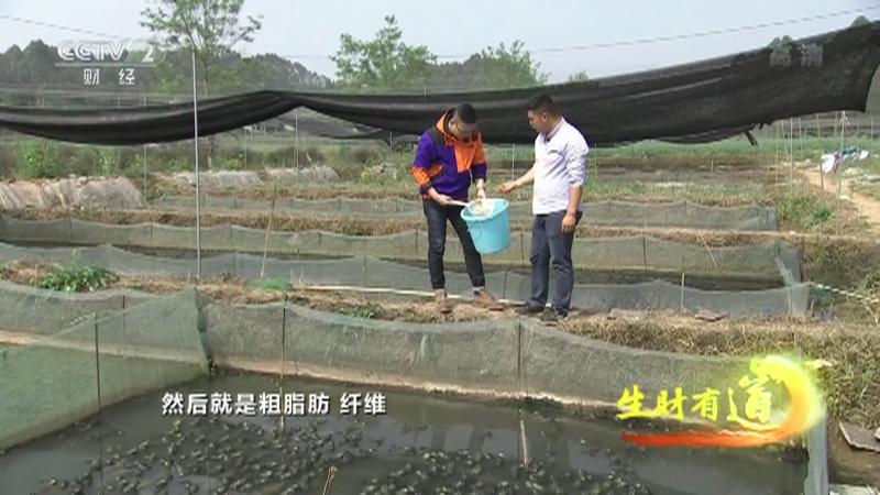 《生财有道》 20210629 乡村振兴中国行——新思路成就新财路