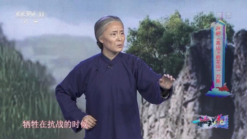 评剧高山下的花环片断 表演:韩立姣 青春戏苑