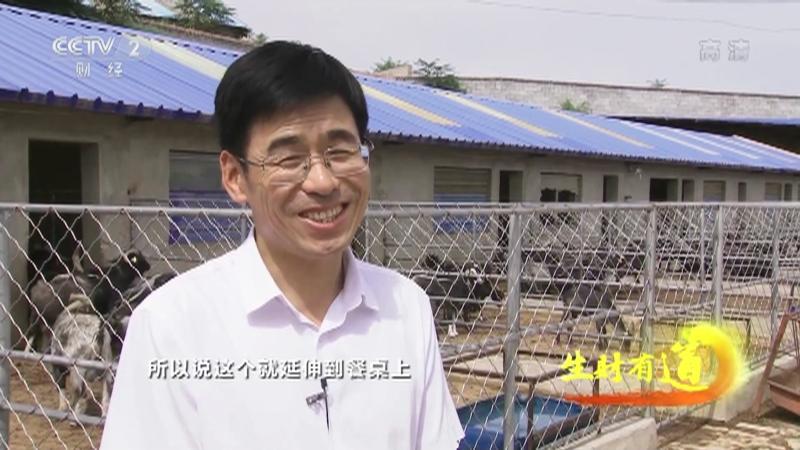 《生财有道》 20210902 咱们家乡有特产——甘肃环县:鲜香羊羔肉 甜美小杂粮