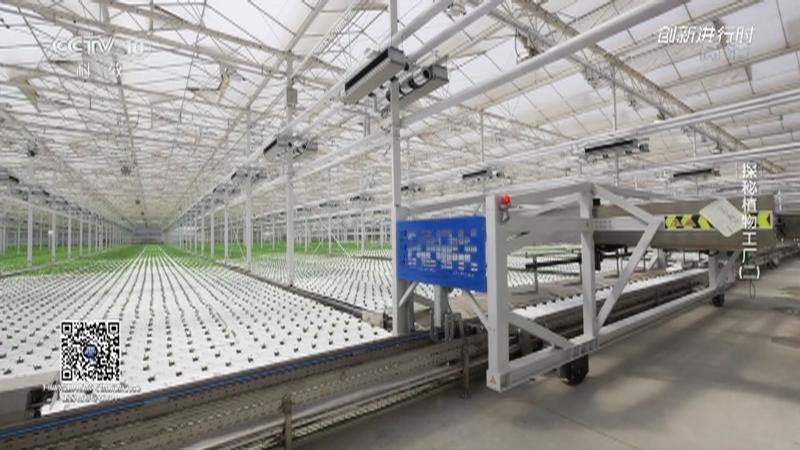 《创新进行时》 20210909 探秘植物工厂(二)