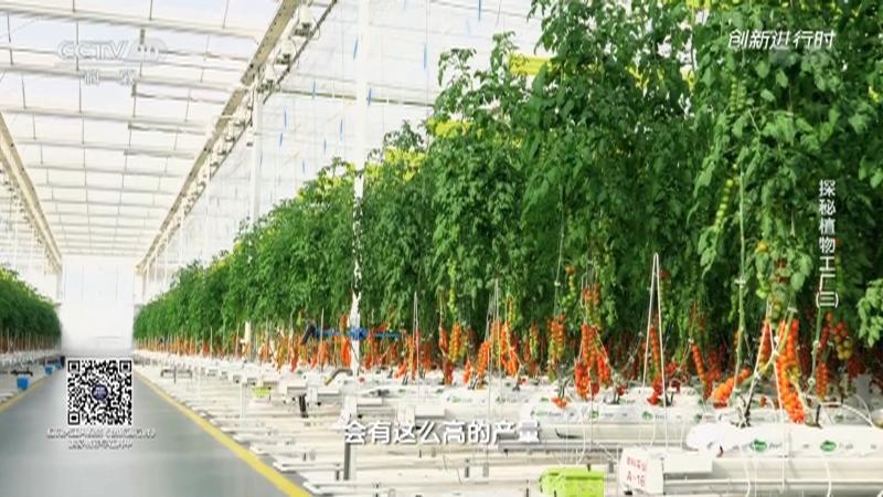 《创新进行时》 20210910 探秘植物工厂(三)