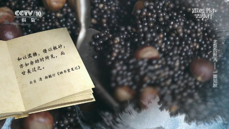 《跟着书本去旅行》 20210923 北京的秋天——一栗知秋