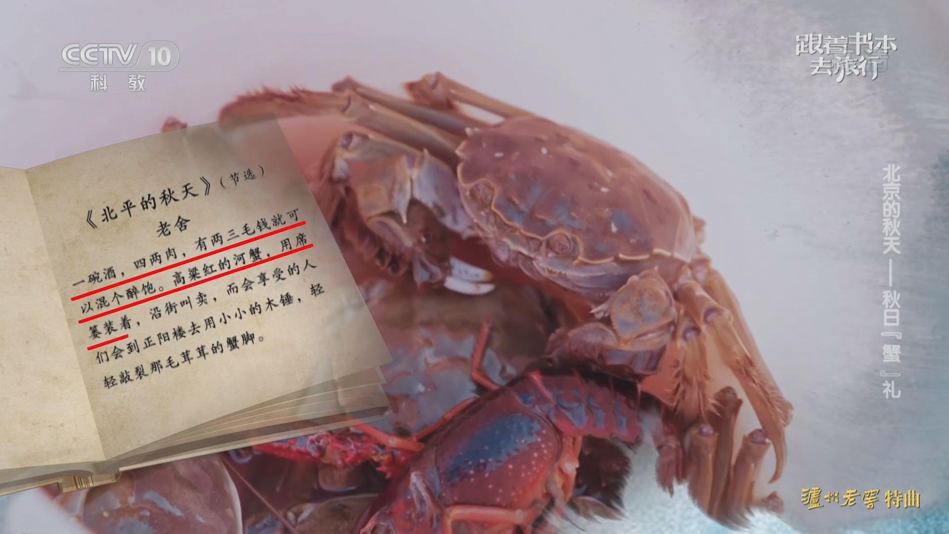 """《跟着书本去旅行》 20210924 北京的秋天——秋日""""蟹""""礼"""
