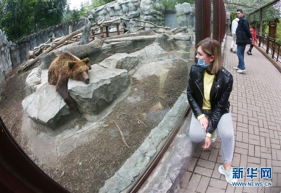 乌克兰首都基辅动物园恢复对外开放