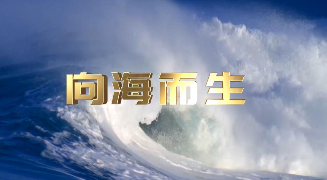《向海而生》宣传片(二) 00:01:15