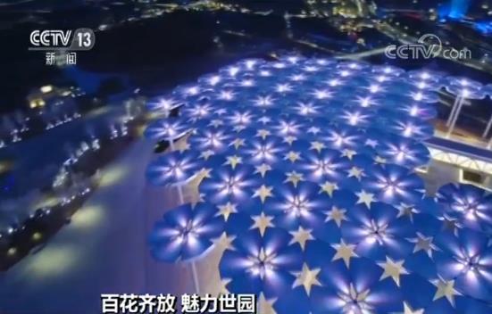 【百花齐放 魅力世园】航拍国际馆:花伞花海点亮世园会