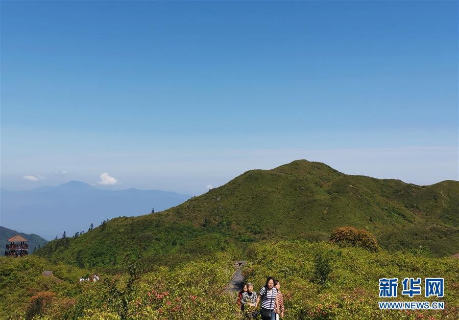 游客在浏阳大围山游玩(5月10日摄)。新华社记者 刘良恒 摄