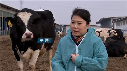 [致富经]患癌女人 如何创造牛财富 20190523