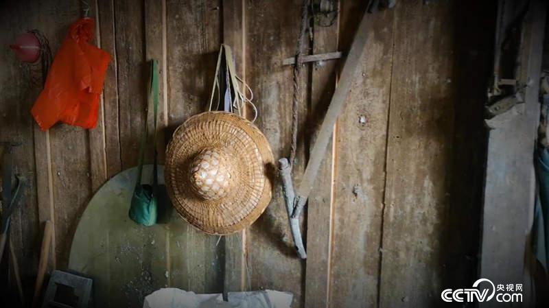墻上掛的斗笠、水壺,是楊天才巡護邊境的重要工具。(王莉莉 攝)