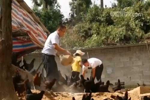 国新办:深度贫困地区脱贫攻坚成效显现