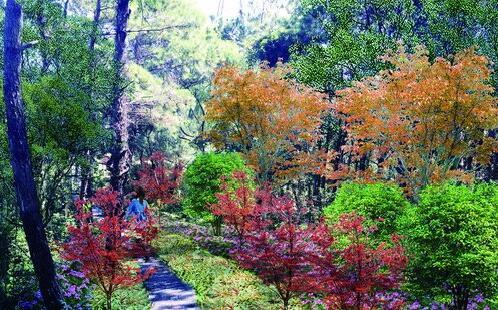 ●狐尾山观海亭游步道