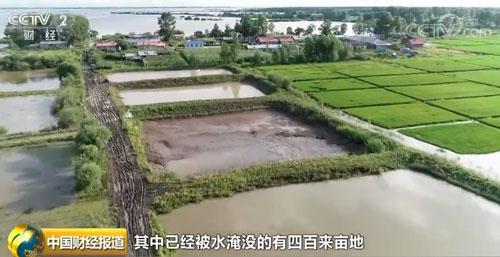 黑龙江抚远:水位超警 超过48万亩耕地被淹