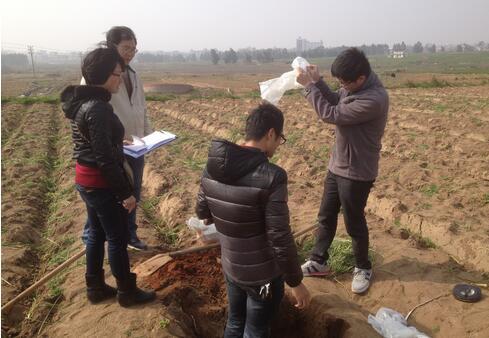 开展测土配方施肥现场挖土。(牛效礼 摄)