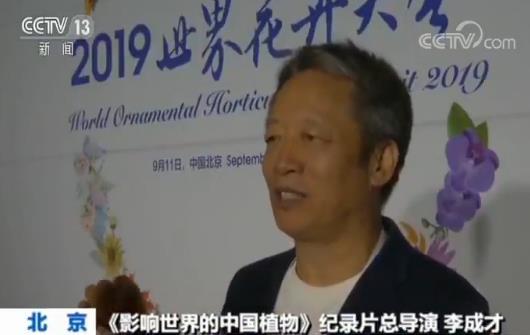 """""""2019世界花卉大会""""在北京世园会开幕"""