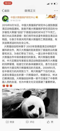 中国大熊猫保护研究中心官方微博截图。 中国大熊猫保护研究中心供图 摄