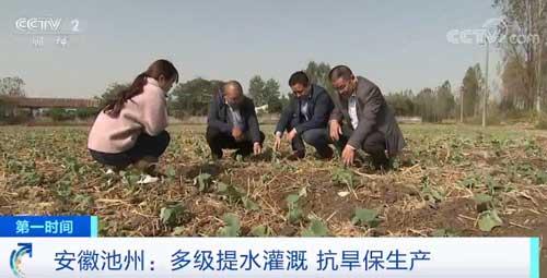安徽池州:多级提水灌溉 抗旱保生产
