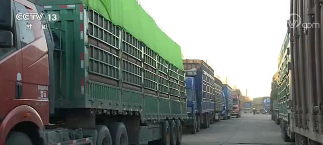 黑龙江多措并举为粮食收储保驾护航 全力保障农民利益