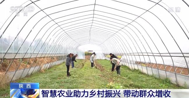 物联网现代技术助力智慧农业发展 推动农业现代化