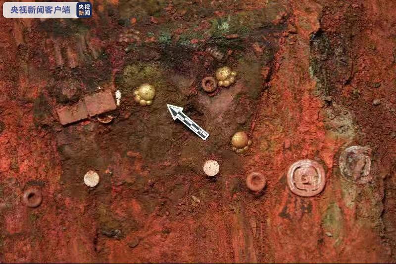 山西垣曲北白鵝墓地出土5件貓爪形金飾,快來看看吧!