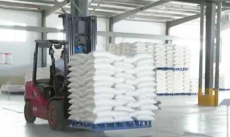 河南滑县夏粮收购有序进行 小麦优质、优价明显