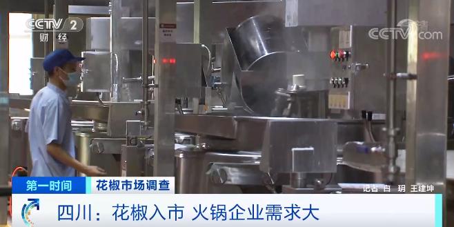 四川:红花椒的集中入市 火锅企业需求大