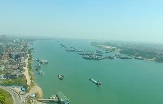 6台红外光电雷达全天候守护 长江江豚种群稳中有升